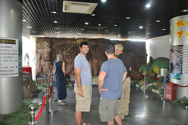 """Dinosaurs Along The Silk Road"" -- Sinofossa 2009 2: IVPP"
